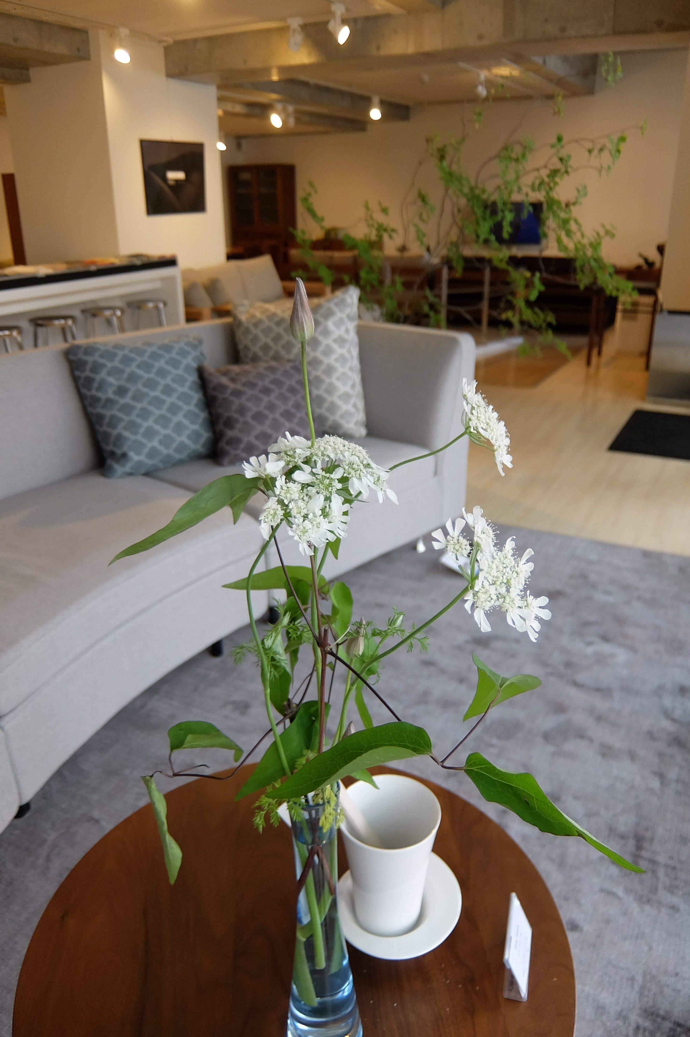 家で過ごす時間を快適にするソファ