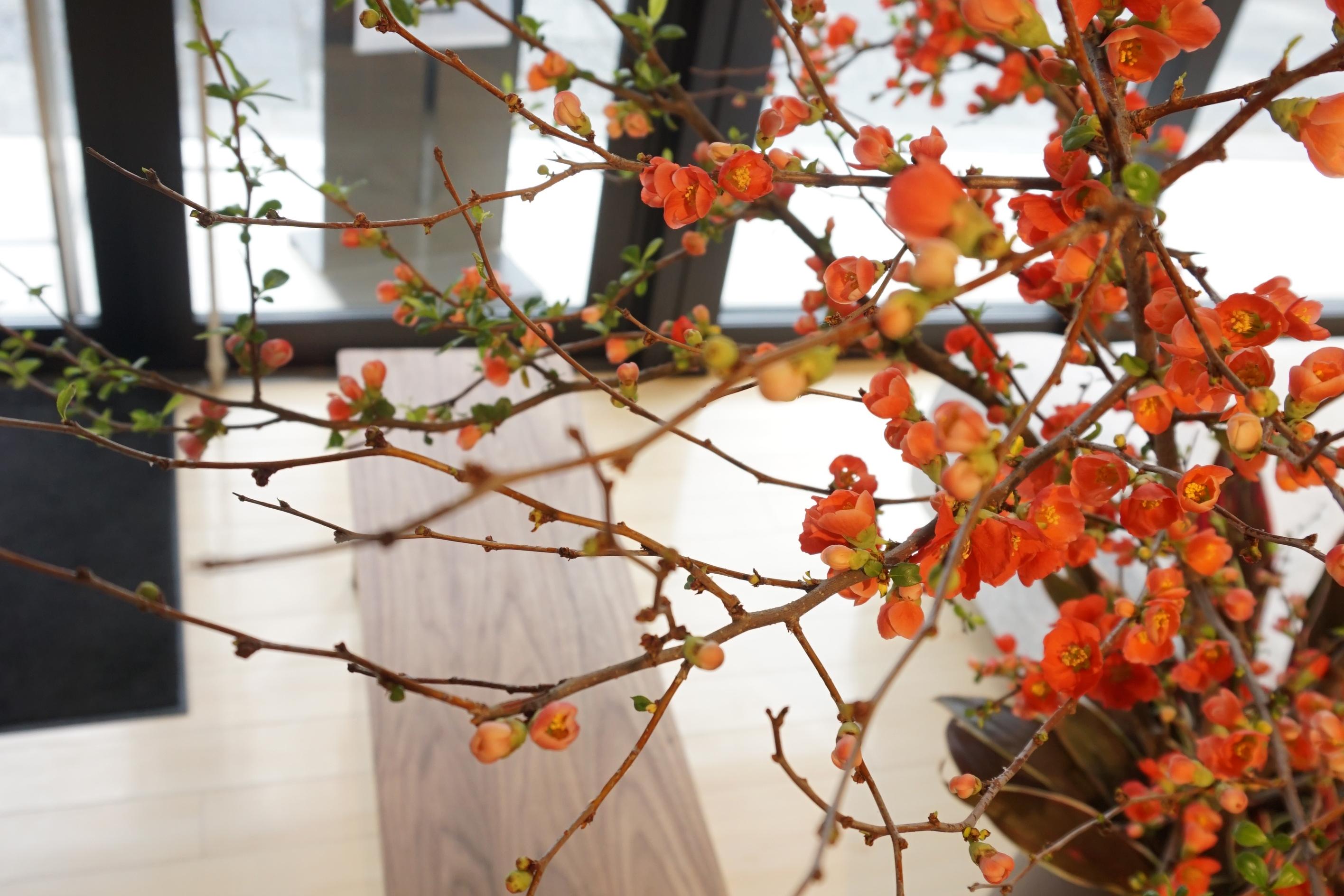 京都店に新しいサイドテーブルが入荷しました